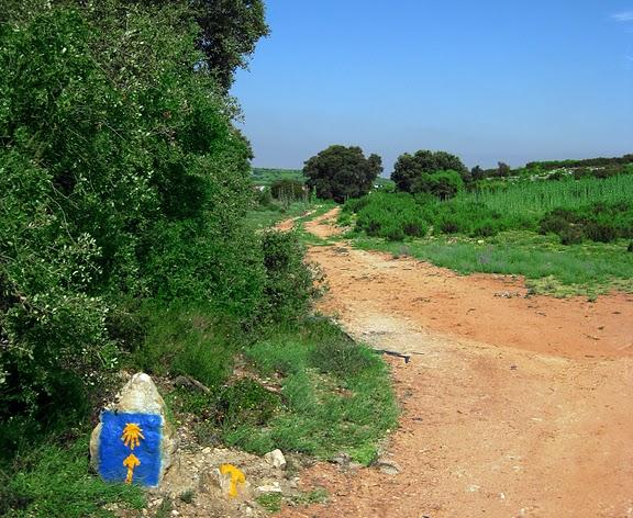 El Camino de Santiago por la provincia de Ávila